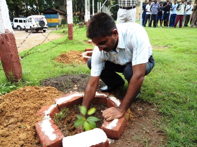 Tree Plantation week at Asansol & Durgapur